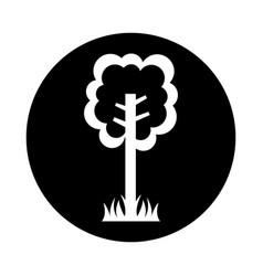 Tree plant ecological icon vector