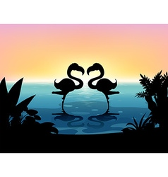 Silhouette flamingo standing in the pond vector image