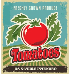Retro tomato vintage advertising poster vector image vector image
