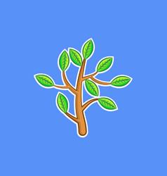 a bush branch vector image