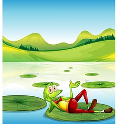 A frog above the waterlily floating at the pond vector