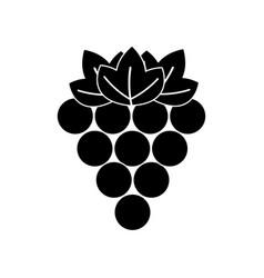 Black contour grapes fruit icon image vector