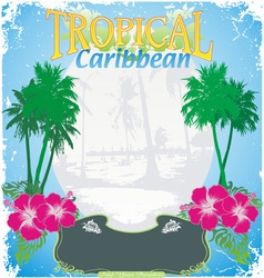 carribean tropical island vector image
