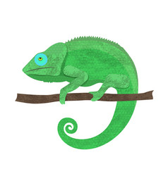 chameleon icon cartoon of walking vector image