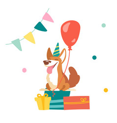 kawaii corgi dog celebrate birthday in room vector image