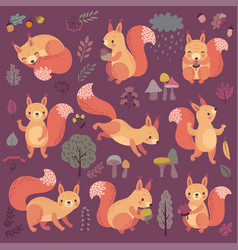 squirrel set hand drawn style vector image