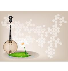 Musical Dan Nguyet Background vector image