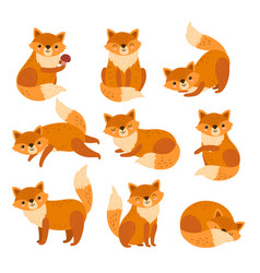 cute cartoon fox forest foxes red animals with vector image