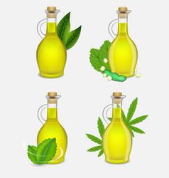 different types of plant oil bottle set vector image
