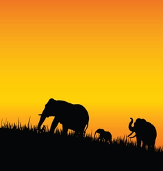 elephant silhouette walking vector image