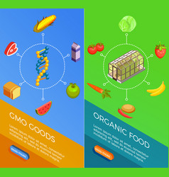 Genetically modified organisms isometric banners vector