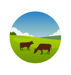 meadow with grazing cows vector image