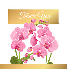 Orchid phalaenopsis flowers bouquet thank you card vector