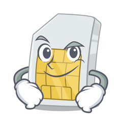 smirking simcard in a character shape vector image