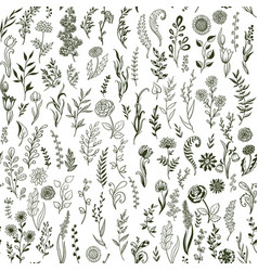 branches flowers and grass with leaves doodle vector image