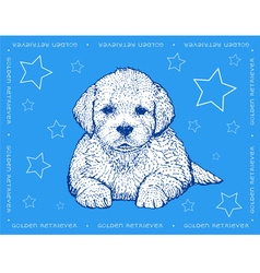 Dog Golden Retriever on a blue ornamental backgrou vector