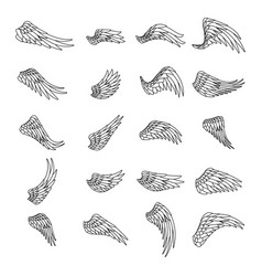 lineart isolated wings bird animal angel fly vector image