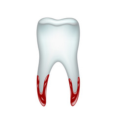 pulled tooth with blood vector image