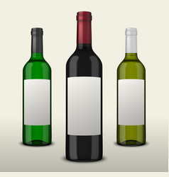 Set of three realistic wine bottles with vector