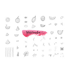 Sketch hand painted of watermelons elements vector