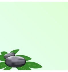 spa leaves stone background vector image vector image