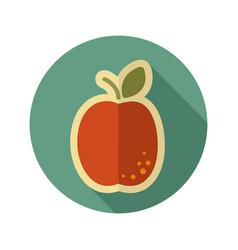 Apricot flat icon fruit vector