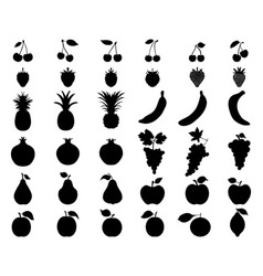black silhouettes fruit vector image