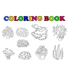 Coloring book of beautiful coral collection vector