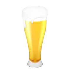 realistic glass of light refreshing beer on white vector image