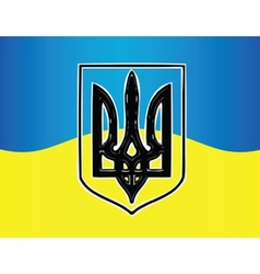Ukraine flag vector