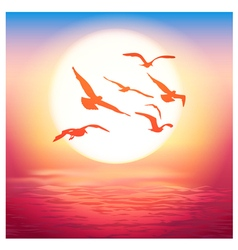 birds at sunset vector image vector image