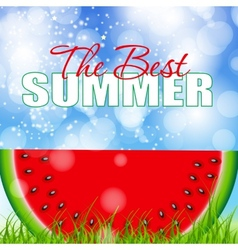 Abstract Natural Summer Background with Watermelon vector