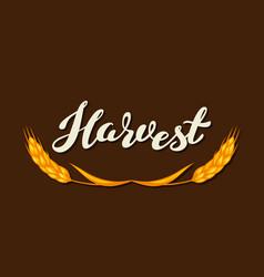 harvest typography letteringemblem autumn vector image