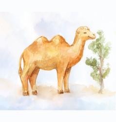 Little camel eating little bush in desert vector