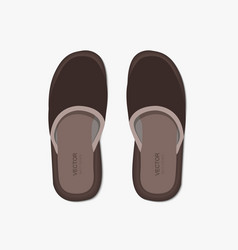 Modern flippers on gray bakground vector