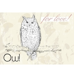 Poster with owl Vintage style vector image vector image