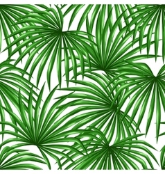 Seamless pattern with palms leaves Decorative vector image vector image