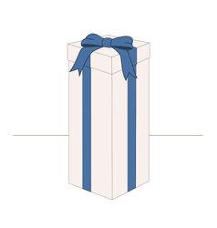 High rectangular gift box vector image vector image