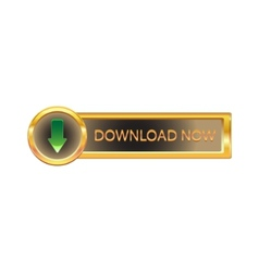 gold button with downloads sign vector image vector image