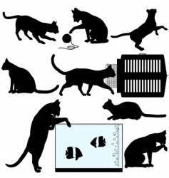 pet cat silhouette vector image vector image