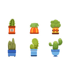 cactus plants in pots set potted cactuses and vector image