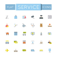 Flat Service Icons vector image