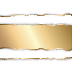 Gold and white torn paper template background vector