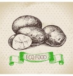 Hand drawn sketch potato vegetable Eco food vector