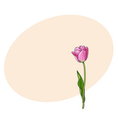 hand drawn of side view pink tulip flower vector image vector image