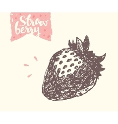 Hand drawn strawberry sketch vector image