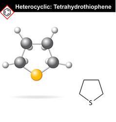 Tetrahydrothiophene chemical formulas vector image vector image