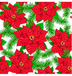 seamless pattern of poinsettia and spruce branch vector image vector image