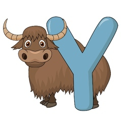 Alphabet Y with yak cartoon vector