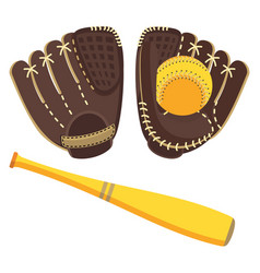 Baseball brown equipment set vector